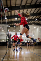 Volleyball: Munciana Leopards-Cobras 17u-18u 2-21-16